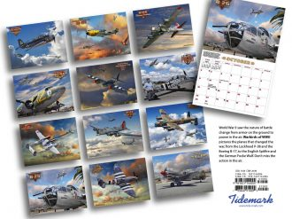 Warbirds of WWII BC 48-2022